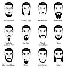The Beard Care Guide