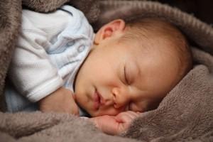 adorable-21998_960_720