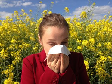 Living with allergies: tips to help keep you going